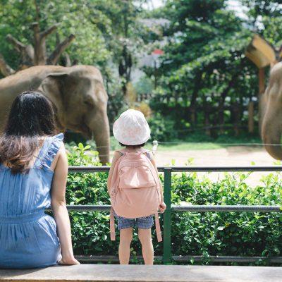 Zoo-Muenster